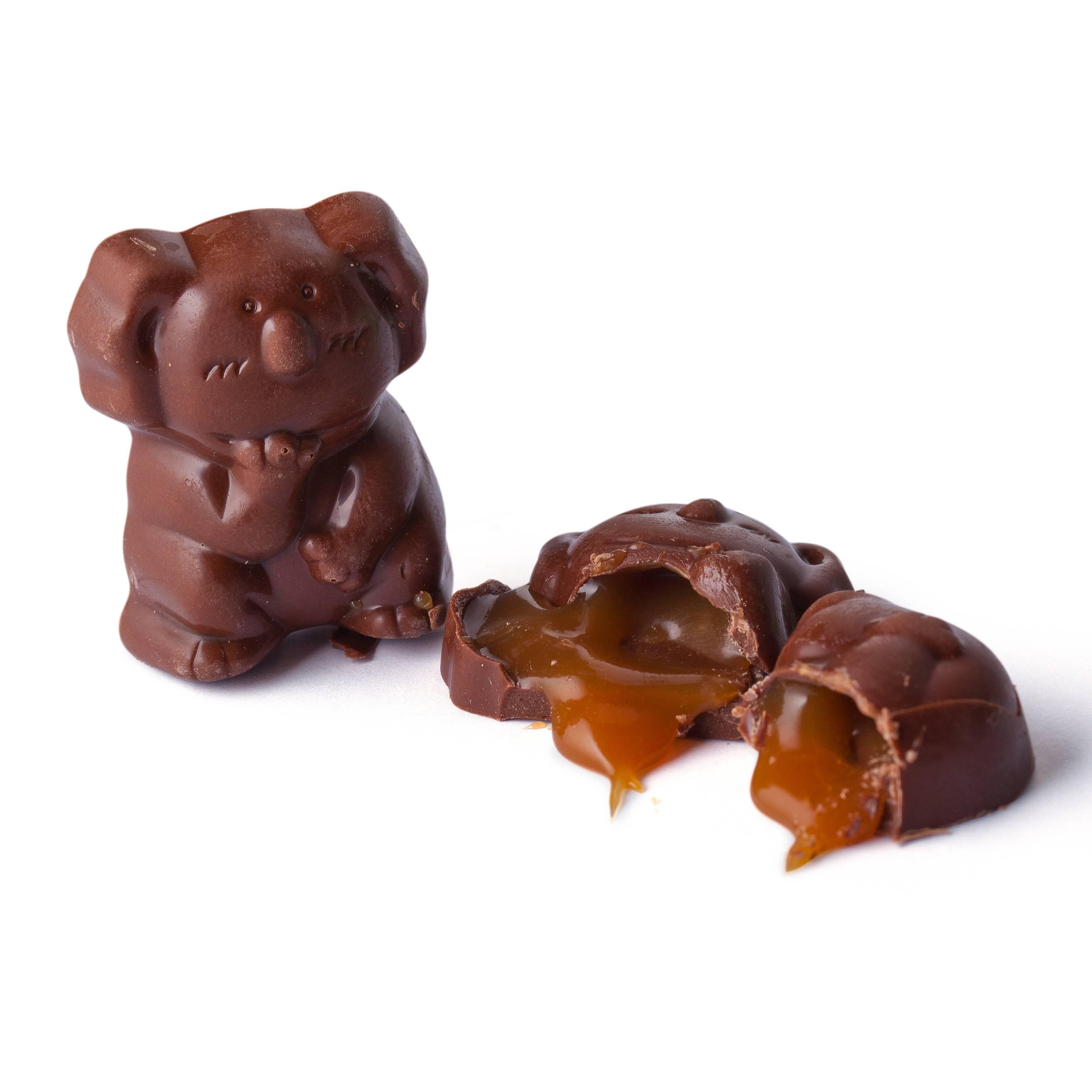caramel-koala